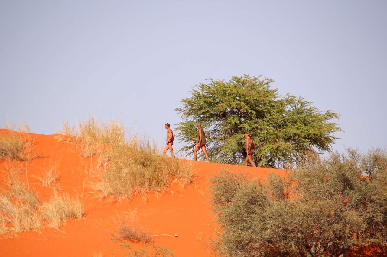 Reiten Reitsafari Safari Landschaft Kalahari